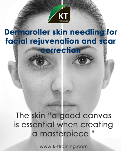 dermaroller and skin care training